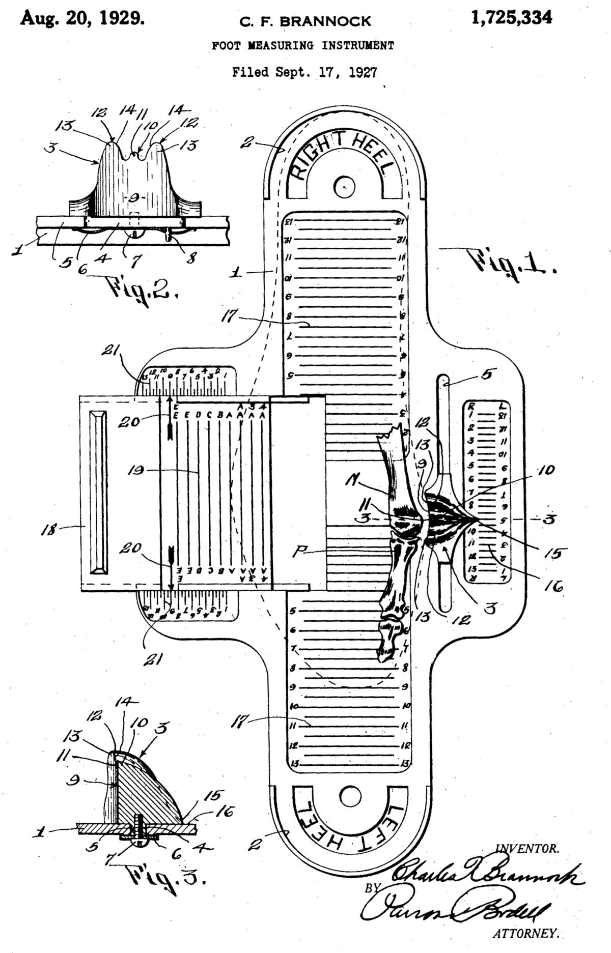 Brannock Device - Wikipedia