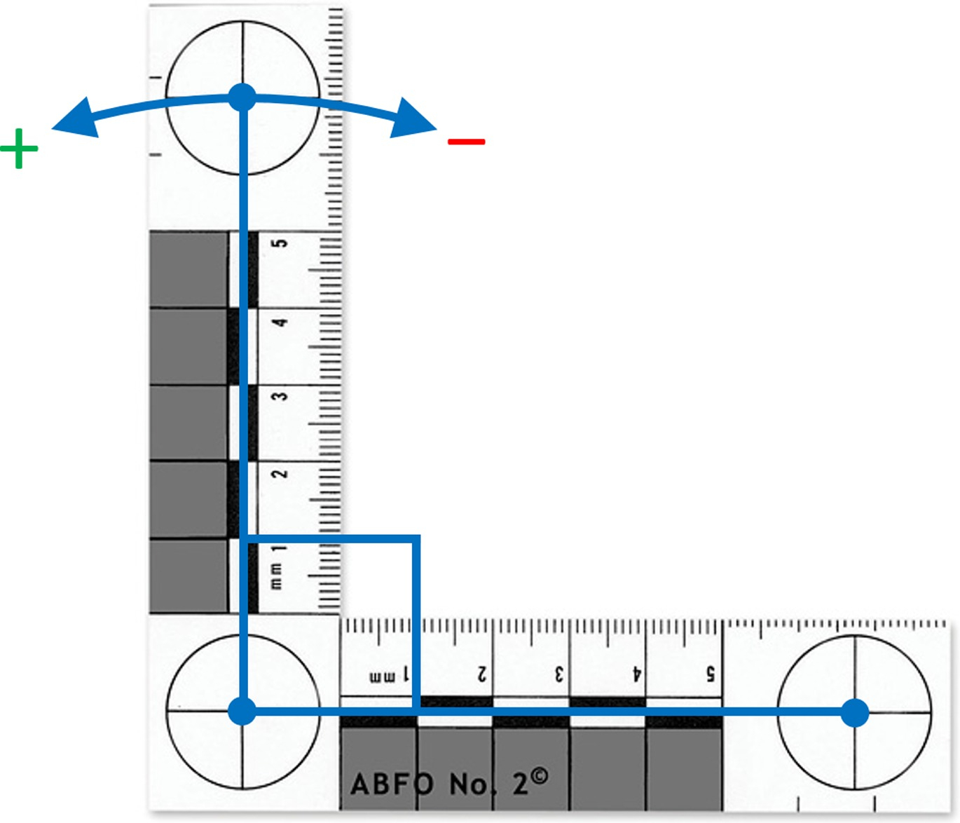 Dimensional Review Of Scales For Forensic Photography