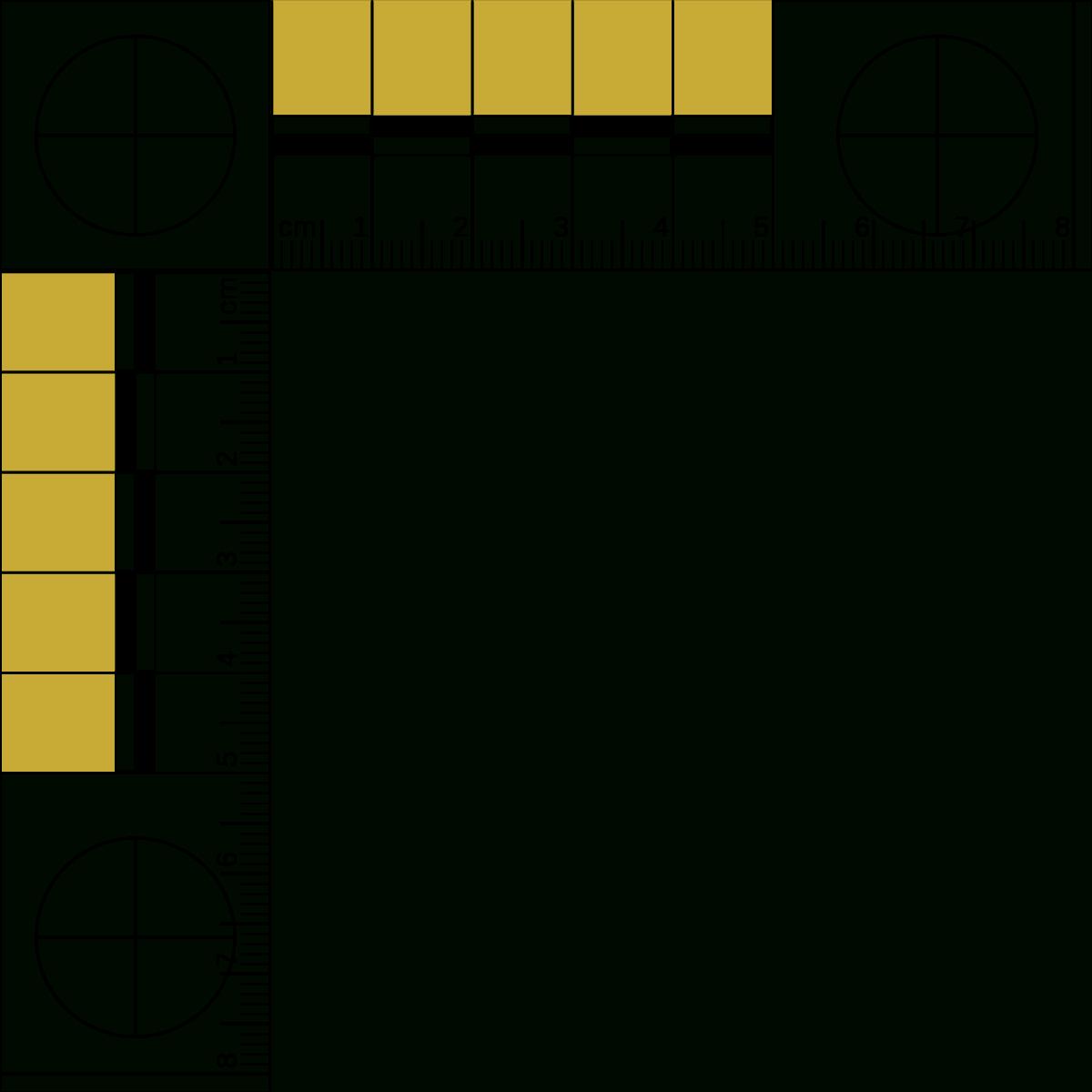 File:50 Mm L Ruler Ty.svg - Wikipedia