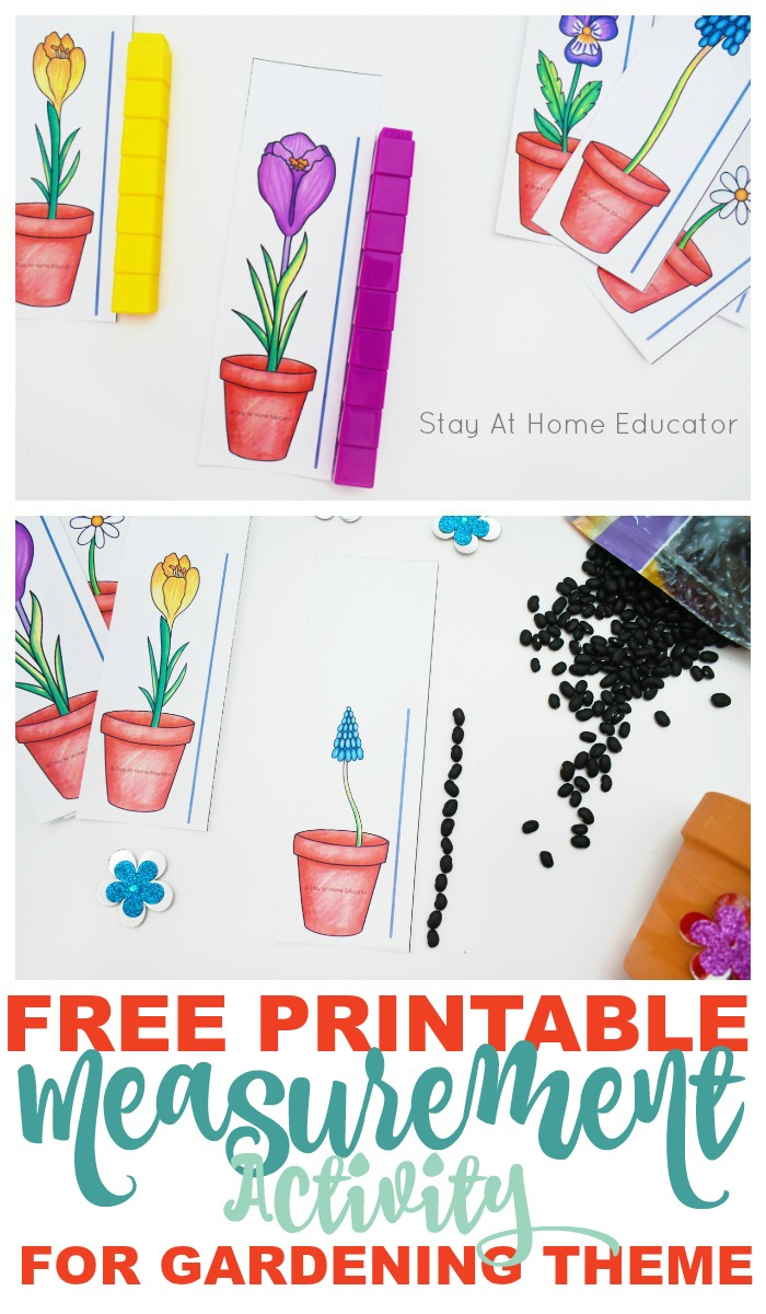 Free Flower Height Measurement Printable For Preschoolers