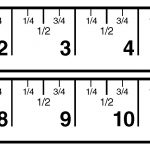 Great Ruler For Teaching Half And Quarter Inch Measurement