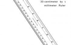 Printable to Scale Centimeter Ruler