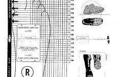 Printable Shoe Ruler
