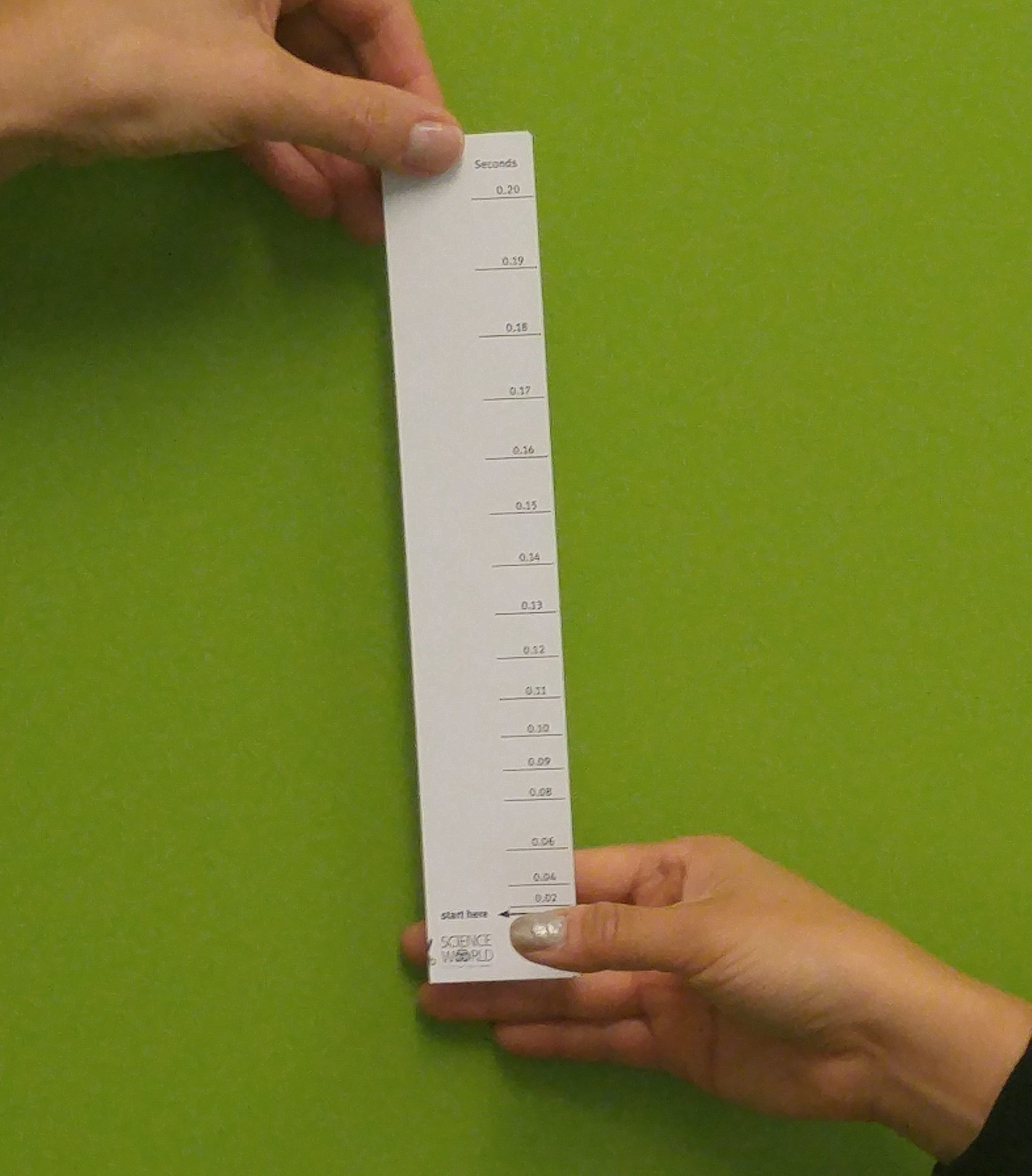 Reaction Time Ruler - Science World