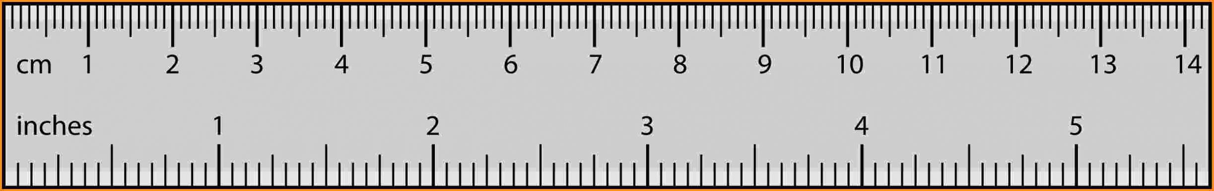 Real Size Ruler - Bakara.luckincsolutions
