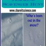 Share It! Science : Animal Tracking Scavenger Hunt